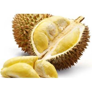 Sầu riêng là loại trái cây nhiều dinh dưỡng  nhất trên thế giới.