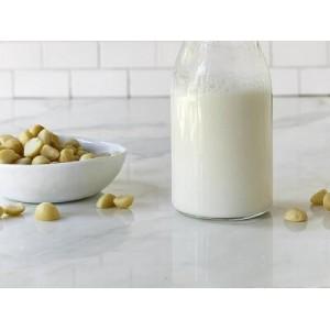 Tự Làm Sữa Hạt Mắc Ca Thơm Ngon Tại Nhà