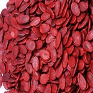 Hạt thông đang được thay thế hạt dưa nhân ngày tết