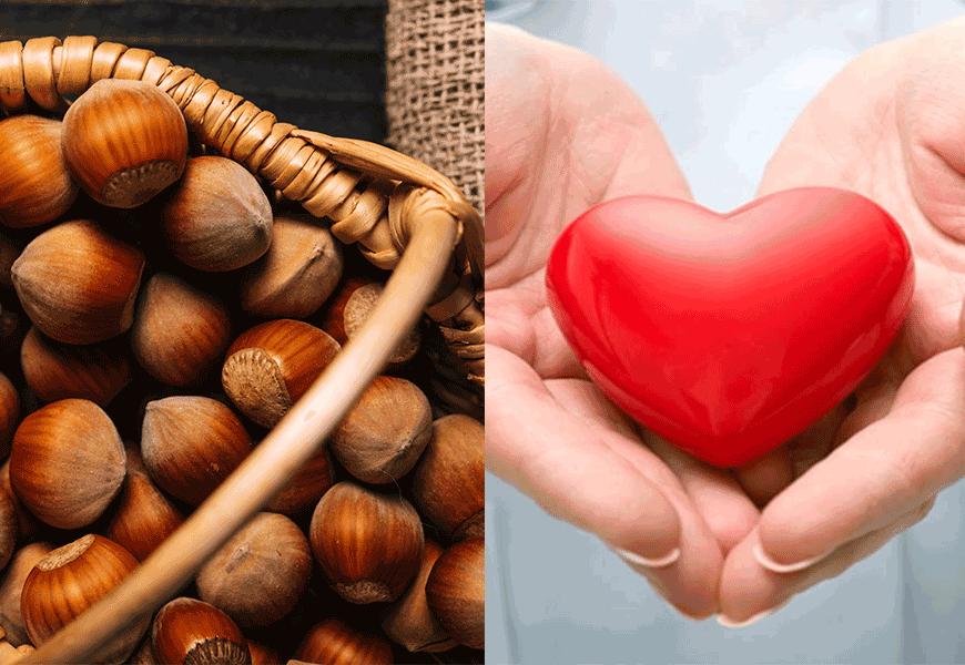 Hạt phỉ tốt cho tim mạch