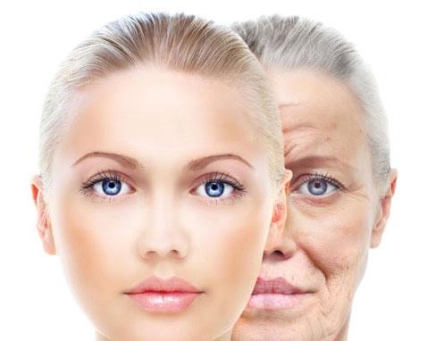 Châm quá trình lão hóa