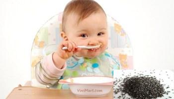 Những điều cần lưu ý khi dùng hạt chia cho bé ăn dặm