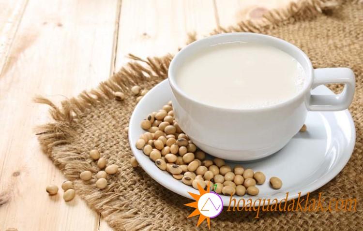 Sữa đậu nành là sản phẩm thay thế sữa duy nhất cung cấp một lượng protein tương tự như sữa bò