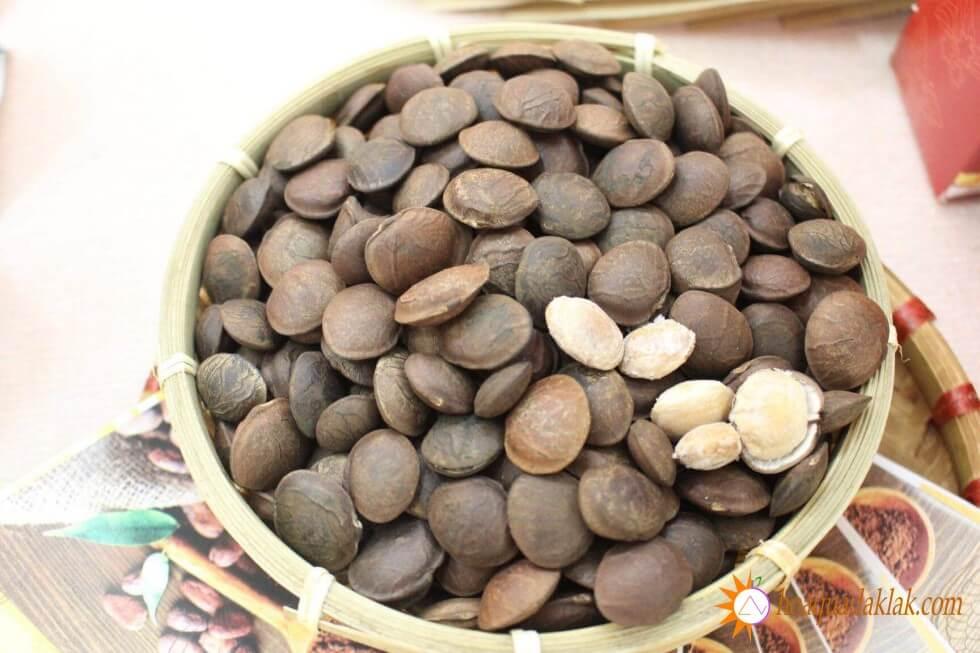 Hạt sachi