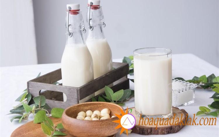 Ngoài được sử dụng làm các món ăn, hạt sen còn được dùng làm sữa hạt sen