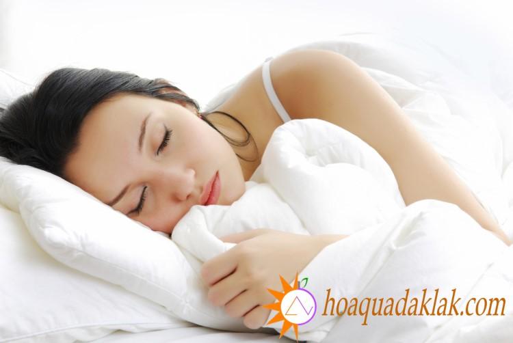 Sữa hạt sen giúp cải thiện chất lượng giấc ngủ