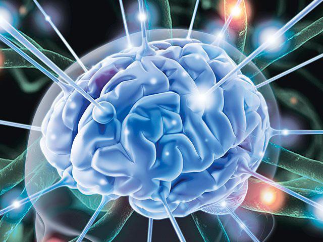 dùng hạt chia tốt cho trí não