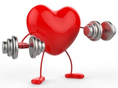 tim khỏe mạnh