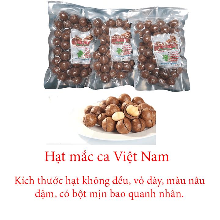 Hạt mắc ca Việt Nam