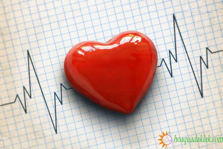 Bệnh nhân có vấn đề về tim